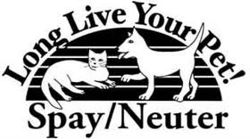 spay and neuter 1