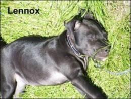 Lennox2