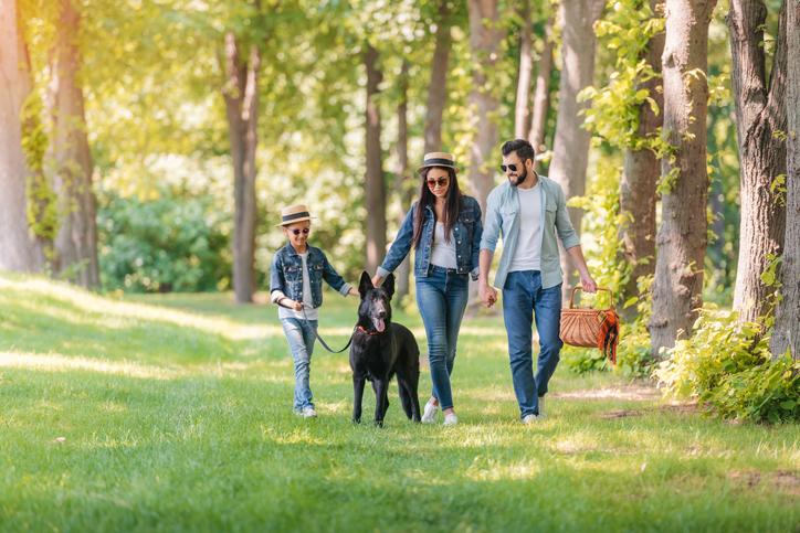 Young family with German Shepherd